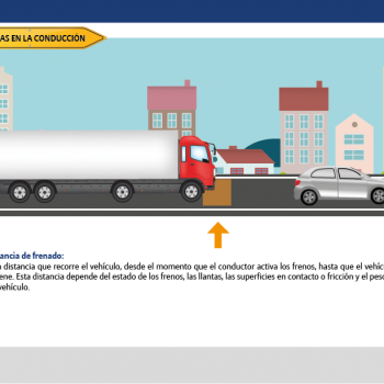 INTERFAZ vehiculos pesados-07